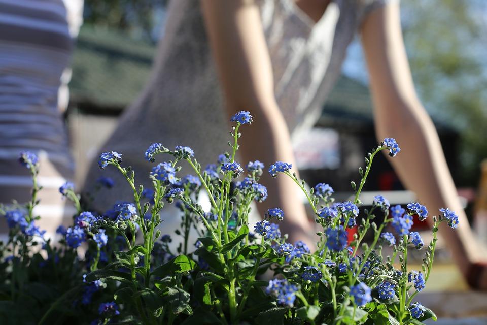 travaux jardin